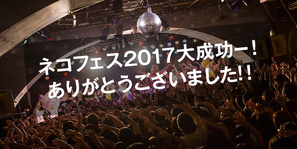 ネコフェス2017大成功ー!ありがとうございました!!
